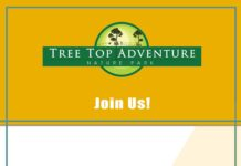 tree_top_adventure