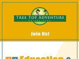 tree_top_adventure